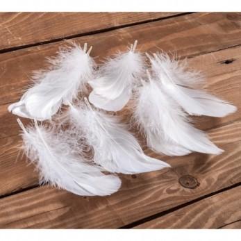 Διακοσμητικά φτερά λευκό