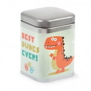 Μεταλλικό κουτί Δεινόσαυρος
